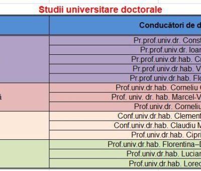 Programe studii Doctorat